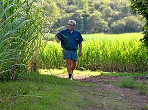 Fate of sugar industry to be decided in October