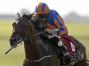 Irish star gets top weight for Melbourne Cup