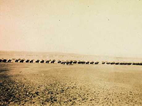 Line of mounted Light Horse troops on manoeuvres Heliopolis Cairo Egypt 1915.