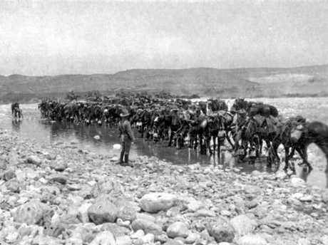 Esani, Palestine. c. 1916. Australian Light Horsemen watering their horses at a river crossing.