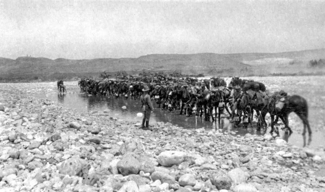 Esani, Palestine. c. 1916. Australian Light Horsemen watering their horses at a river crossing.