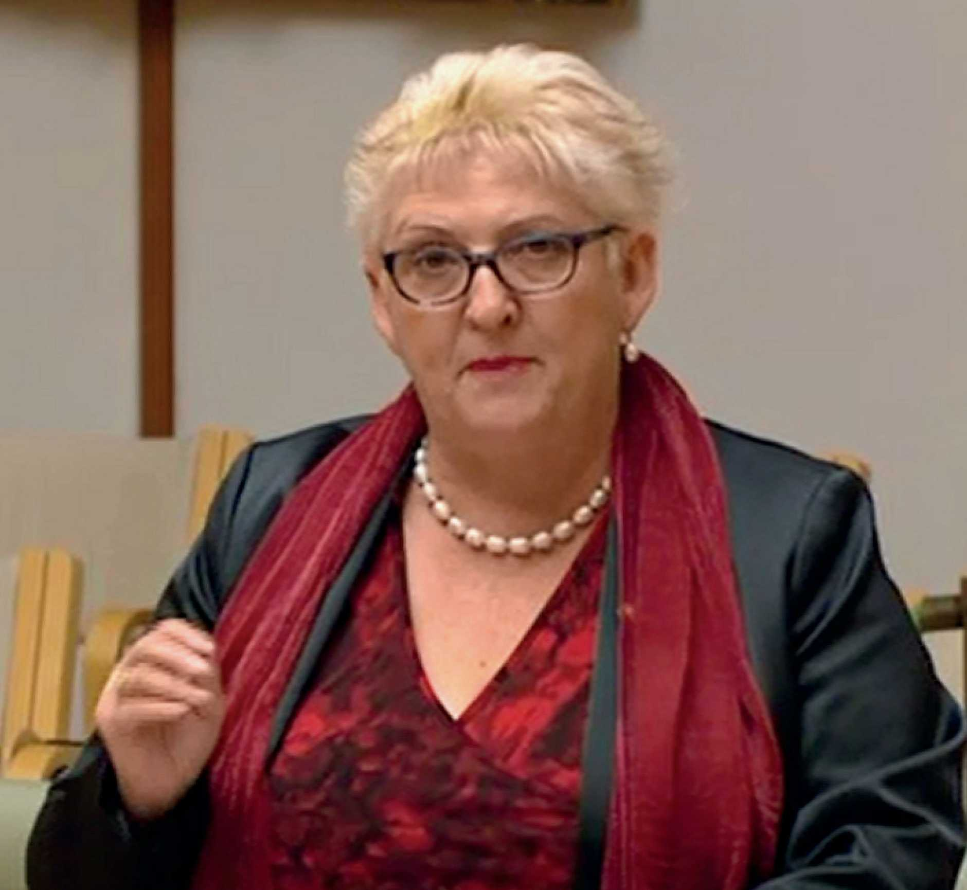 Capricornia MP Michelle Landry responds to NBN roll out criticism.