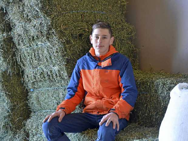 MAKING HAY: Toowoomba apprentice jockey Baylee Nothdurft at trainer's Lindsay Hatch's stables preparing for his return to race riding next weekend.