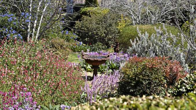 WINNING CREATION: Robyn Rolfe and Timo Sihvola's Vale View garden was awarded as Country Reserve Grand Champion in The Chronicle Garden Competition.