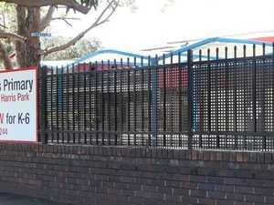 'Predators' force school to build giant steel mesh fence
