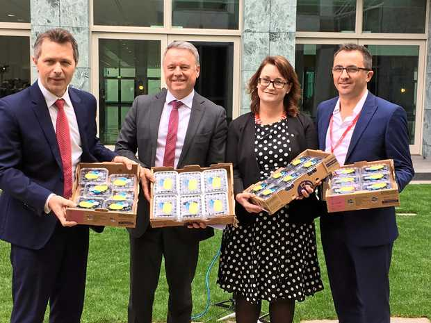 Jason Clare, Shadow Minister for Trade and Investment, Joel Fitzgibbon, Shadow Minister for Agriculture, Fisheries and Forestry, Justine Keay, Member for Braddon, and David Jordan, General Manager Costa Berry Category at Parliament House Canberra.