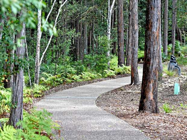 The Maroochy Botanic Gardens is a 82 hectare garden featuring flora and fauna from the local area. Saturrday will see the long-awaited opening on the Whipbird Walk and everyone's invited.