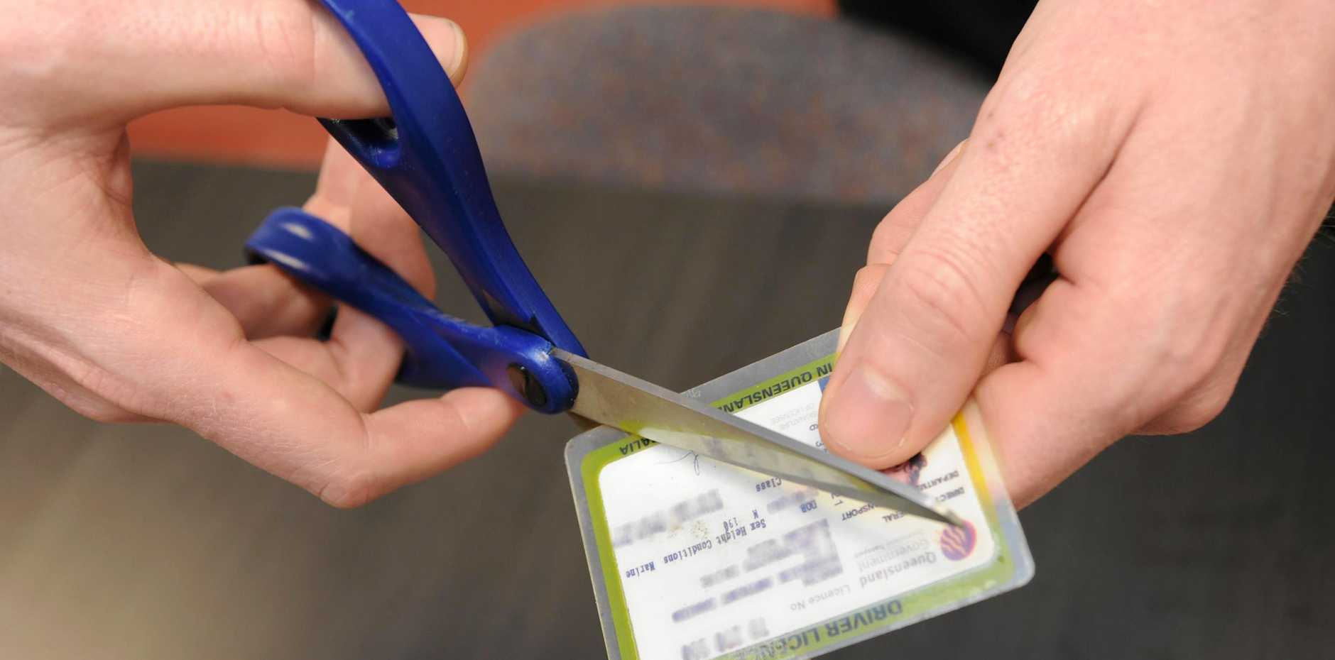 Cutting up licence.  Photo: Alistair Brightman / Fraser Coast Chronicle