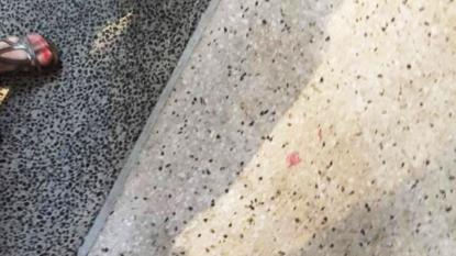 Spot the lipstick stain on the footpath – the woman and her friends found only a smudge from the lipstick tip when they returned to the scene of the offence which cost her $243 for littering earlier.