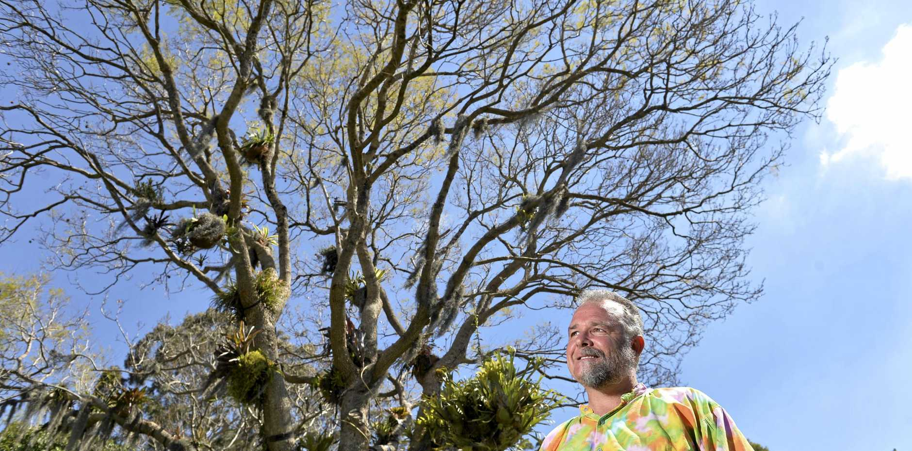 GREEN THUMB: Toowoomba man David Stanfield loves sharing his garden with others.
