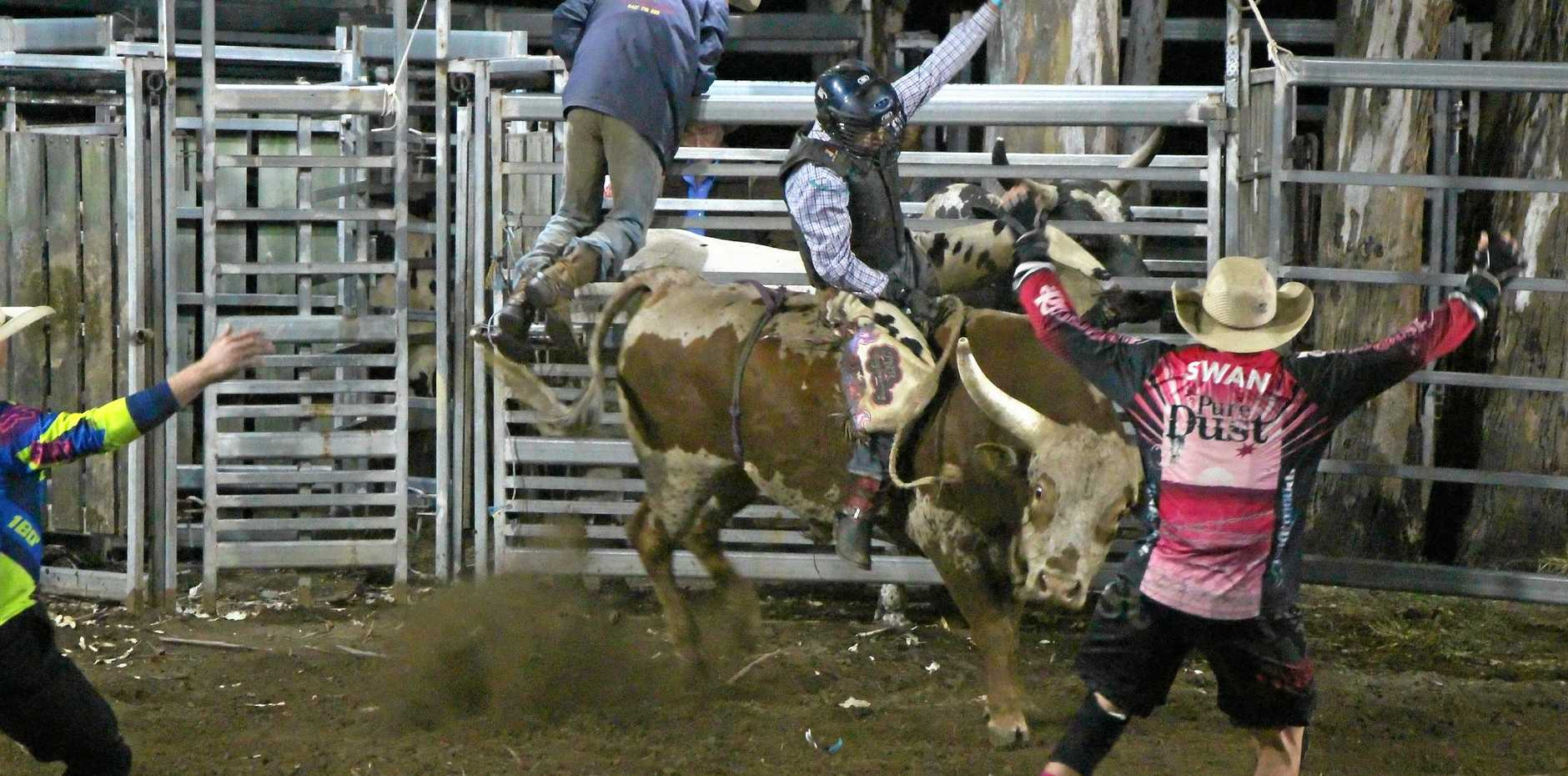 TOP COWBOY: Lane Mellers from Mundubbera took first place in the Novice Bullride.