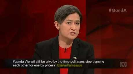 Q&A - Penny Wong: the Coalition has been waging an ideological war for a decade