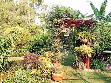 Maryborough Open House and Garden.  Howard and Joy Duke's well tended Aldershot garden.