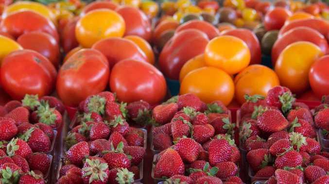 Fresh produce from farmers markets.