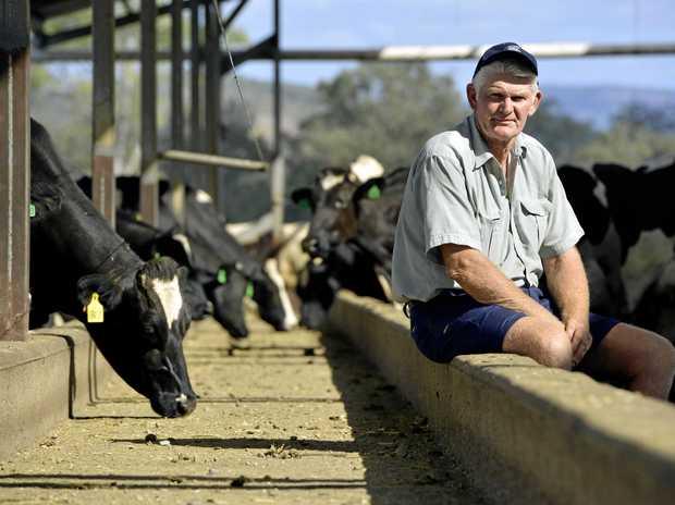 Ross McInnes Harrisville dairy farmer.