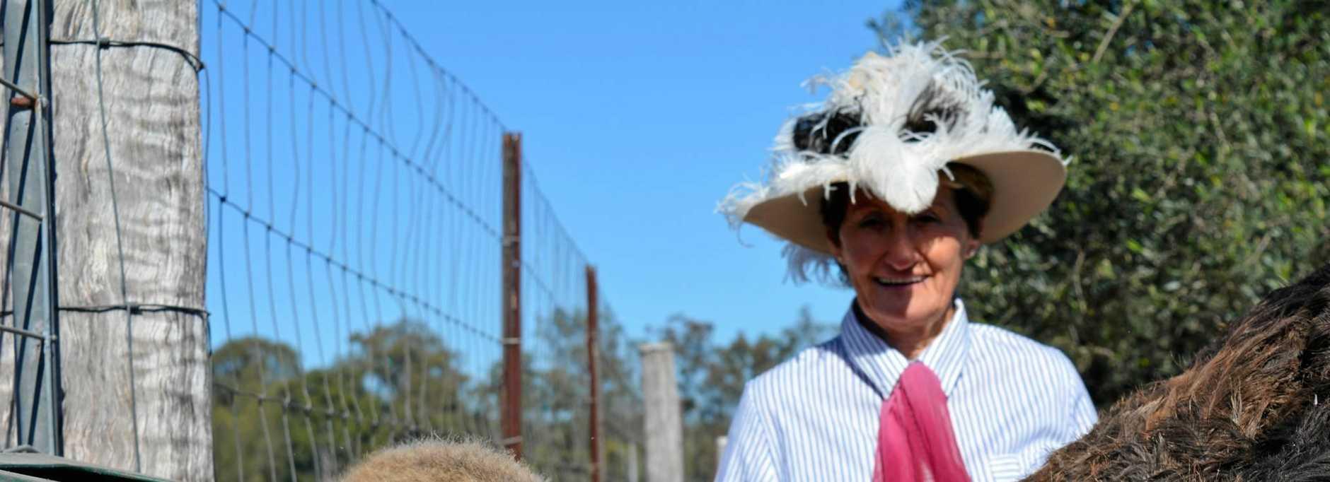 Jill the female ostrich with Brisbane Valley Ostrich and Fish Farm owner Patti Jaenke.
