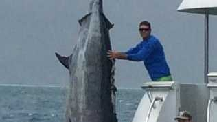 Skipper Bill Billson caught a 507kg grander black marlin at Jenny Louise Shoal, east of Cairns on September 17.