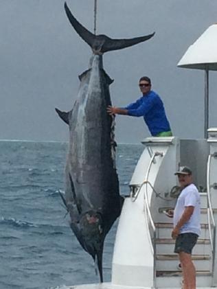 Skipper Bill Billson caught a 507kg grander black marlin at Jenny Louise Shoal, east of Cairns on September 17.