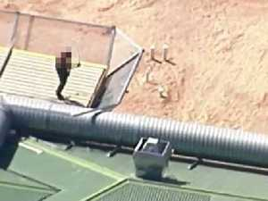 Inmates on roof at Wacol prison