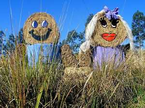 Scarecrow season opens in Mary Valley