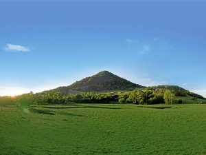 Spring up the Cooroy Mountain at Festival