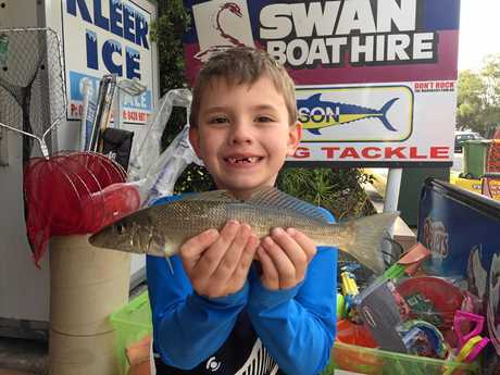 YOUNG ANGLER: Ted Kuirk landed a nice 31cm whiting off Chambers Island on Wednesday.