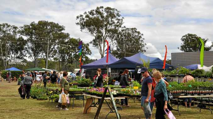THE PROMISE OF SPRING: The 2017 Wondai Garden Expo will feature hundreds of expert stall holders and nurseries.