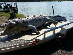 New pics: Massive fine warning over slain Fitzroy croc