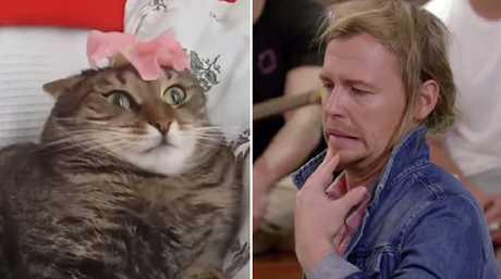 Identical.
