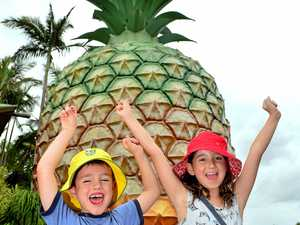 """Lachlan and Ruby Mills continued a proud tradition of visiting the Big Pineapple but the era of """"big things"""" might be coming to an end."""