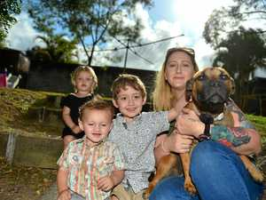 Family reunited with stolen puppy after police seized it