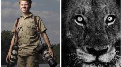 (Left) Robert Irwin is making a name for himself as a nature photographer. (right) A close-up by Robert Irwin.