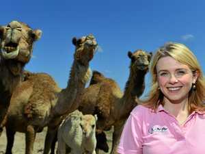 Is Australia ready for camel milk?