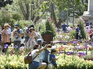 Keeping cool, Queens Park. Carnival of Flowers