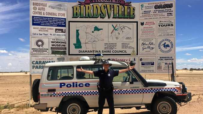 「Stephan Pursell Birdsville」的圖片搜尋結果
