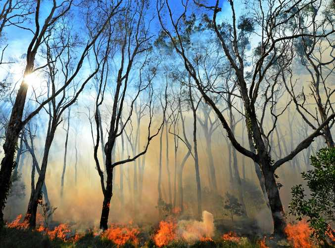 Bush Fires are keeping RFS and emergency services crews busy this week as hot weather sparks sever fire danger.