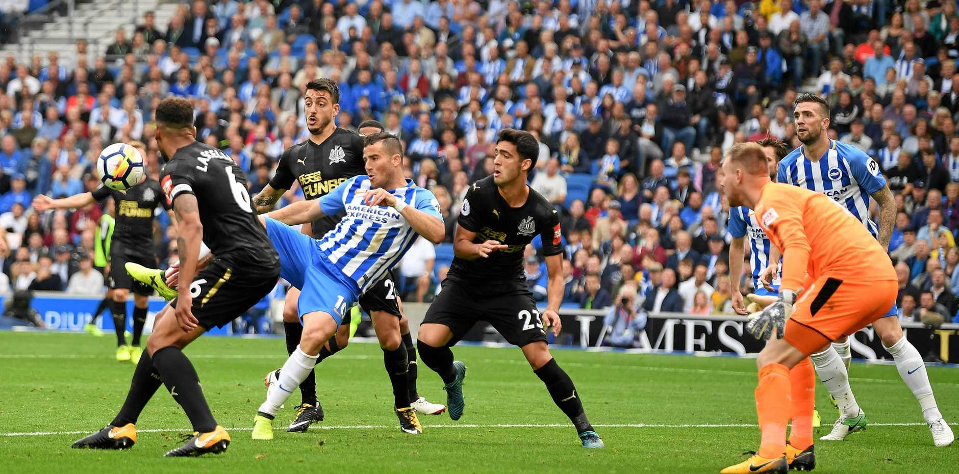 Tomer Hemed (blue and white) of Brighton scores the only goal of the game against Newcastle.