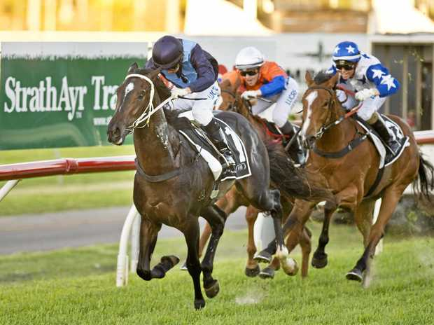 Pure Luck races to victory for jockey Nozi Tomizawa and trainer Ben Currie in last year's Pat O'Shea Plate at Clifford Park.