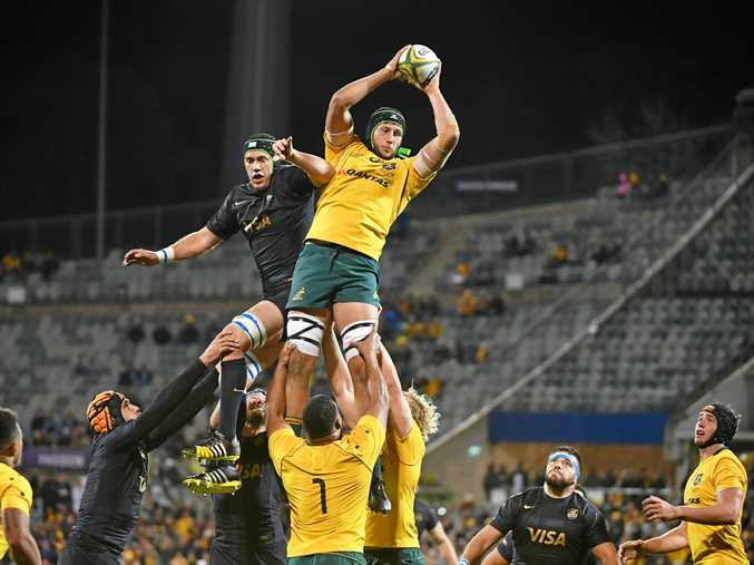 Adam Coleman of the Wallabies wins a lineout against Argentina.