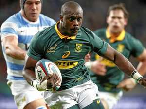 Springboks coach to show faith in under-siege team