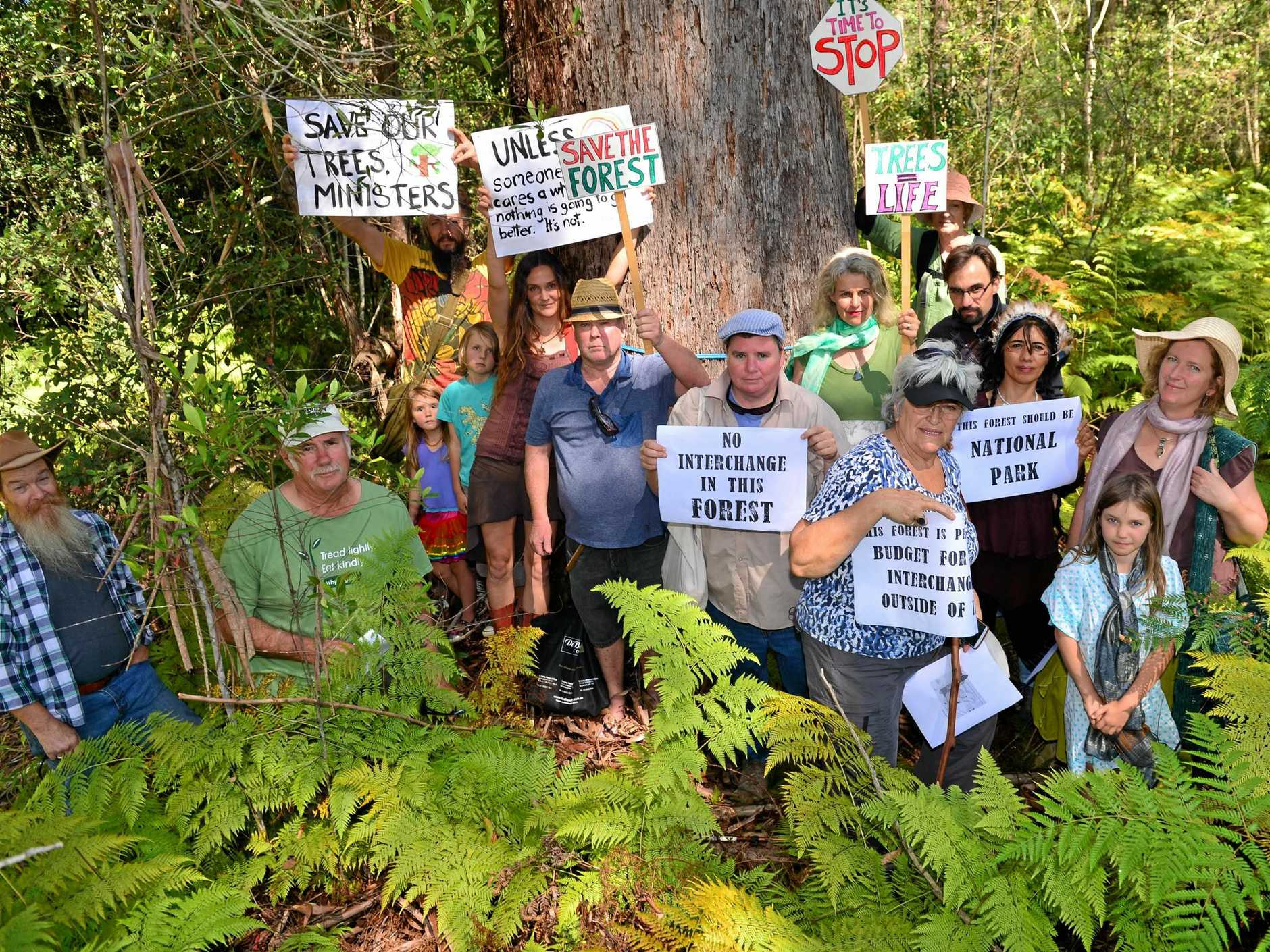 SAVE THE TREES: The Save the Steve Irwin Forest group campaigned successfully to save vegetation from being lost to the Caloundra interchange Bruce Highway infrastructure project.