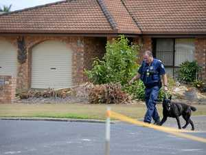 Dog squad called in for search after stolen car crash