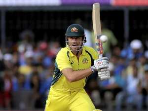 Building momentum key for Ashes, says all-rounder Stoinis