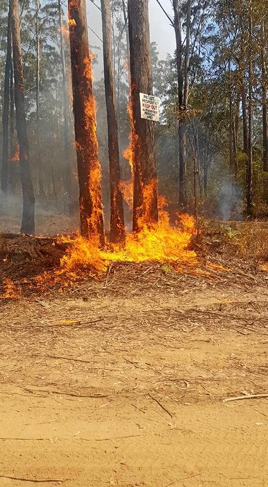 Members of Casino RFS Brigade helped out other local brigades to control a bushfire west of Rappville.