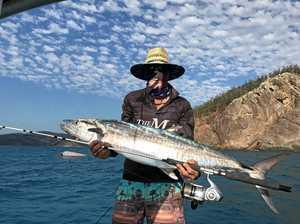 Plenty of island trout on chew
