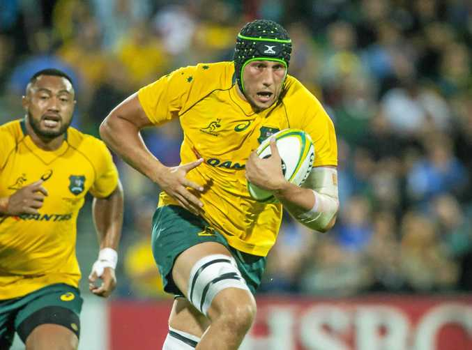Keeping Adam Coleman in Australia is a priority for Wallabies coach Michael Cheika