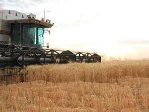 Rise in our agriculture exports