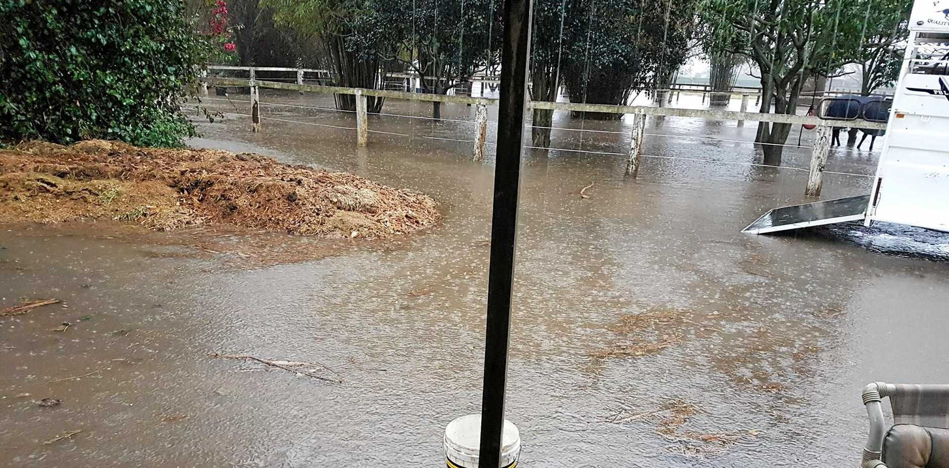 NO HELP: This photo was taken two hours prior to yesterday's intense downpour, looking towards the already-flooded paddocks where William Melvin's horses stood during the storm