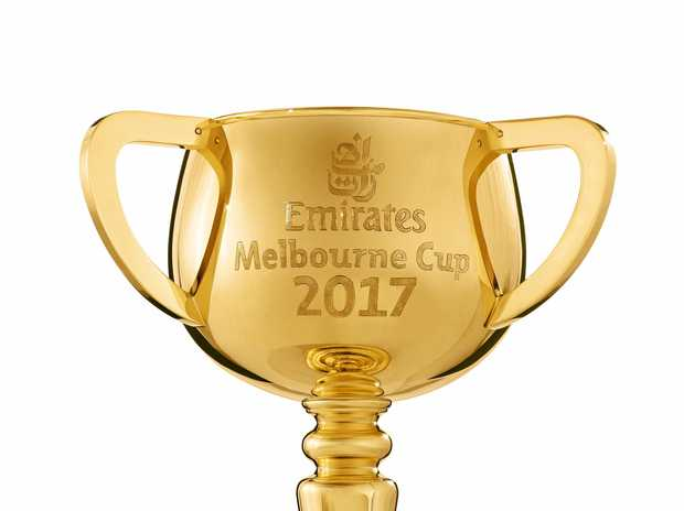 BIG RACE: The 2017 Melbourne Cup will be held on