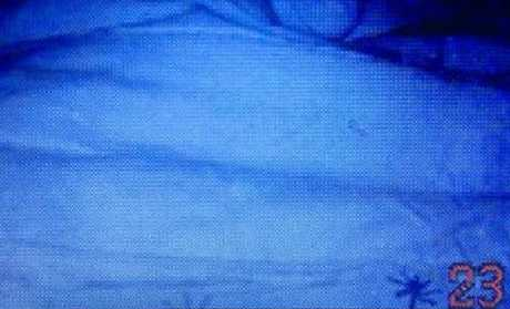 When placed under a night light, the gold stars look like a spider on the bed.Source:Supplied
